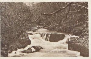 Cornwall Postcard - Golitha Falls - Liskeard - Ref TZ6148