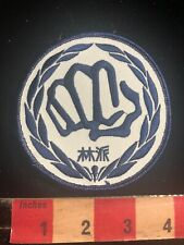 Asian Writing Under A Fist Martial Arts Patch 01Rn