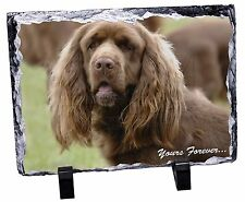 Sussex Spaniel 'Yours Forever' Photo Slate Christmas Gift Ornament, AD-SUS1ySL