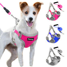 Step-in Small Dog Harness Matching Leash Reflective Breathable Mesh Adjustable