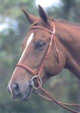 Courbette Plain Ultra-Raised Bridle by Lemetex AG, Horse Size, Newmarket