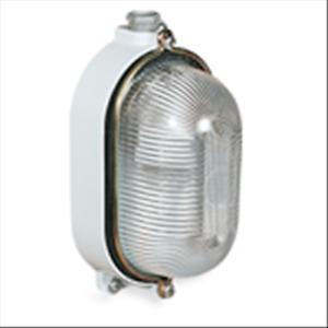 Palazzoli Ceiling Light Oval E27 IP66 Aluminium 831091 Lighting
