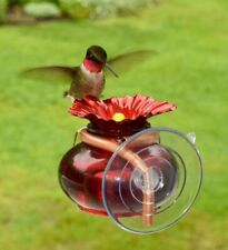 Window Mounted Hummingbird Feeder Bird Feeder Suction Cup Attached Mount Glass