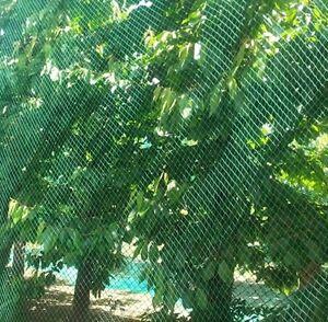 Vogelschutznetz Laubnetz Gartennetz Teichnetz Pflanzenschutznetz 19 Größen