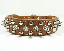 Spiked Studded Rivets Leather Dog Collar Puppy Collar 5 Colours Sizes XS S M L