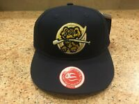 NWT CHARLESTON RIVERDOGS Minor League Replica Baseball Adjustable YOUTH Hat MiLB