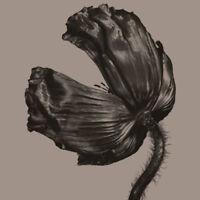 Pet Shop Boys - Release (2017 Remastered Version) [New Vinyl LP] Rmst