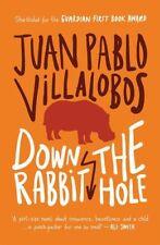 New, Down the Rabbit Hole, Juan Pablo Villalobos, Book