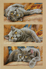 Cross Stitch Kit Dimensions Max the Cat Resting - 3 Kitty Poses #70-35301