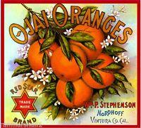 Ojai Nordhoff California Red Star Orange Citrus Fruit Crate Label Art Print