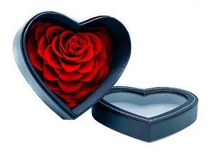 Cute Rose Real Eternal Forever Flower  leather Gift box Handmade Flower