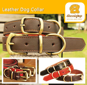 Real Genuine Leather Brass Buckle Dog Collar Puppy Strong Designer Quality