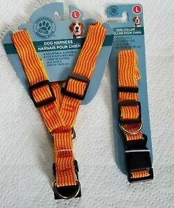 Greenbrier Kennel Club Dog Harness & Collar Set Size Large Adjustable Orange