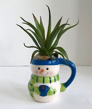 Snowman with Blue Hat Ceramic Holiday Mug with Large Green Grass Succulent