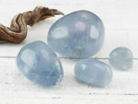 Blue CELESTITE Tumbled Stone - XS, S, M, L, XL - Polished Healing Crystal E0860