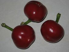 Cherry Bomb - Chilisamen 1000 Samen / Seeds BULK Chili