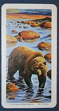GRIZZLY BEAR   Arctic Predator    Superb Vintage Card   Unmounted