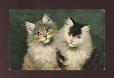 Animals CATS Fluffy Friends Used 1907 PPC