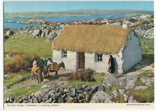 Thatched Cottage, Connemara, Co. Galway PPC, Unposted by John Hinde
