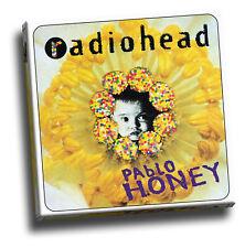 Radiohead - Pablo Honey Giclee Canvas Album Cover Art