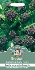 Mr Fothergills - Vegetable - Broccoli Early Purple Sprouting - 500 Seeds