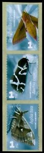 FINLAND Sc. 1314 1 lk Moths 2008 MNH coil strip of 3