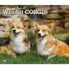 Welsh Corgis Wall Calendar