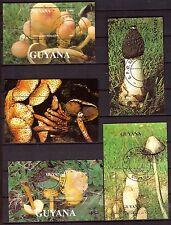 GUYANA  Champignons, Mushrooms  5 blocs, souvenir sheet H170