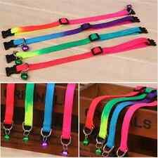 Cat Collar Multi-Colours