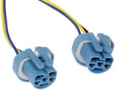Headlamp Socket Dorman 645-997