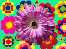 A16✪ 70er Jahre Hippie Festival Flower-Power Gerbera Haarspange Haargummi lila