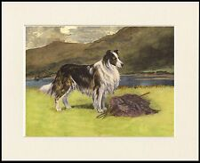 ROUGH COLLIE ON GUARD LOVELY PRINT MOUNTED READY TO FRAME