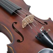 Palatino 4/4 Full Size ANZIANO Violin Outfit VN-950
