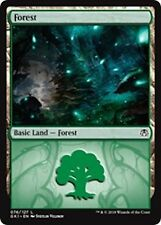***10x Forest (Golgari)*** MINT Guilds of Ravnica Kits GRN MTG Magic Cards