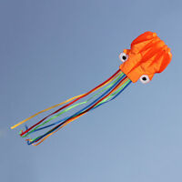 3D animal Flying Kite adultos niños single line cometas Outdoor Park Beach