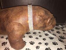 "Medium Purple Swarovski Crystal Rhinestone Dog Collar Fits 14-18"" Necks"