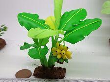 Banana Tree (M) Maison de poupées miniatures fleurs, jardin
