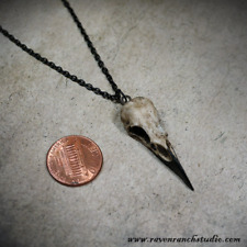 Raven Skull Necklace Resin Cast Skull - Gothic Gift Bird Skull Jewelry Crow