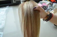 Best Quality Clip in Human Hair Extensions Black Brown Blonde Red Full Head