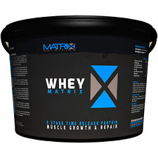Protein Shakes & Bodybuilding