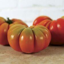 Genuwine Tomato - 10 Seeds - Brandywine/Costoluto Genovese Mix