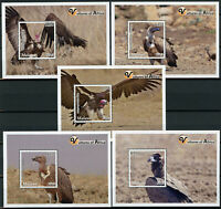 Malawi 2018 MNH Vultures of Africa Hooded Vulture 5x 1v S/S Birds Stamps