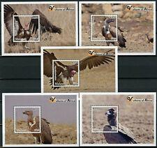 More details for malawi 2018 mnh vultures of africa hooded vulture 5x 1v s/s birds stamps
