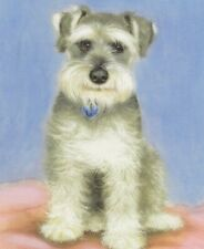 More details for dogs schnauzer