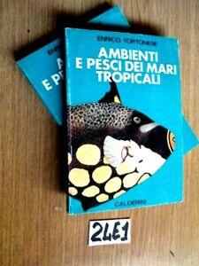 TORTONESE AMBIENTI e PESCI DEI MARI TROPICALI CALDERINI (24E1)