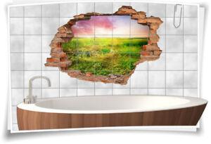 Fliesenaufkleber Fliesenbild Wanddurchbruch Landschaft Feld Wiese Sonnenaufgang