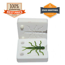 Aksenti Stonefly Mold Fishing Lure Bait Mold DIY Soft Plastic Bug 35 mm