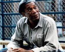 Morgan Freeman Shawshank Redemption 8x10 Photo 003