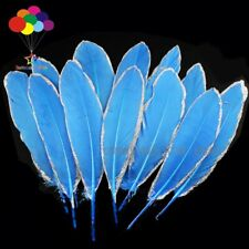 NEW 10-100pcs silver Dipped blue lake goose feather 15-20CM DIY Accessories