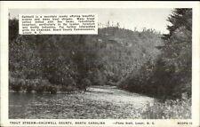 Trout Stream Caldwell County  Lenoir NC Postcard